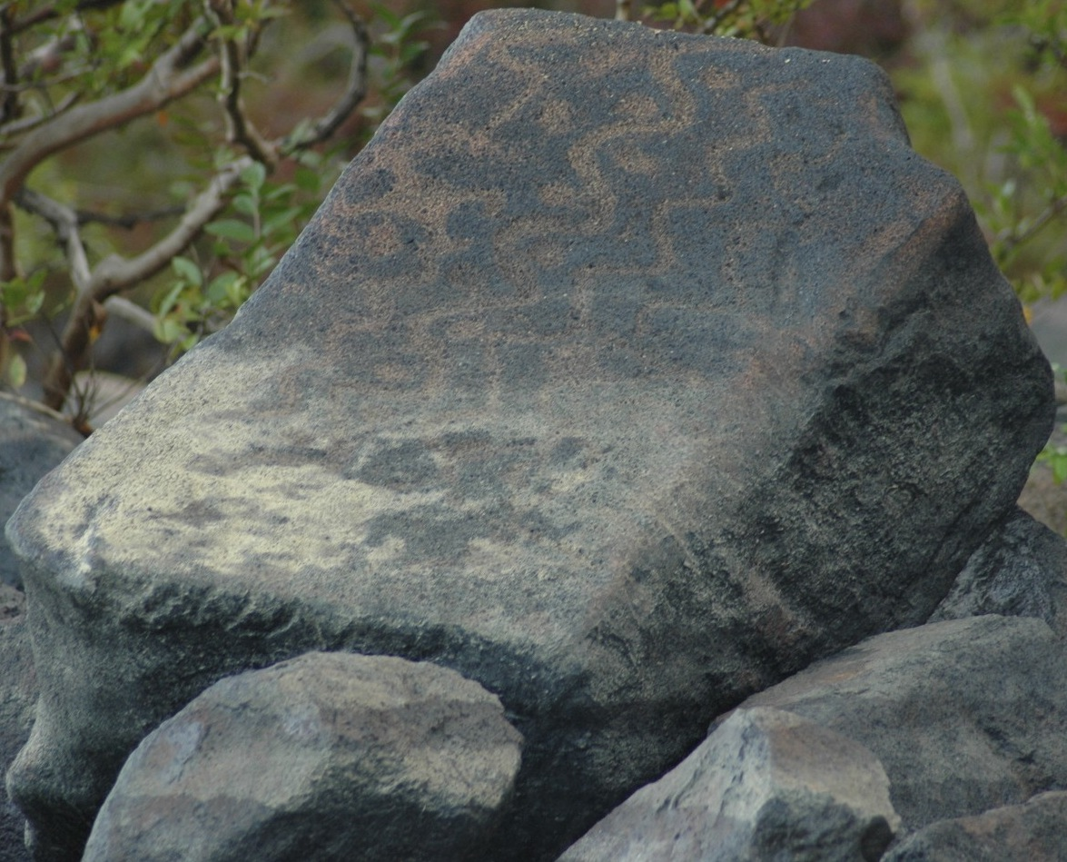 Petroglyphs on the Essequibo River near Kurupukari Crossing (photo credit: Michael Hamilton)