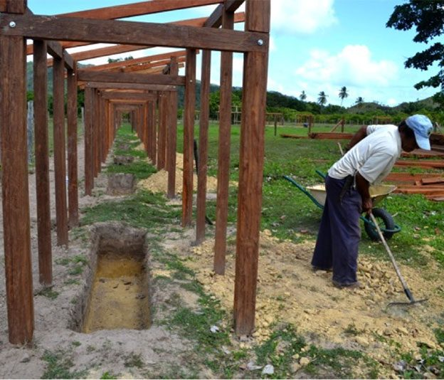 Festival Construction – Composting Toilets!