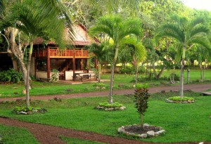 The lush grounds of Rock View Lodge