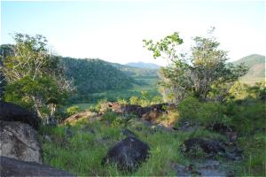 RVL-panorama-nature-trail-vista-01-300x200