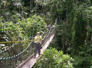 The-Iwokrama-Canopy-Walkway-300x224