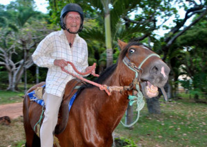 horseheader-300x214